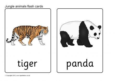 It is a picture of Zany Printable Animal Flash Cards