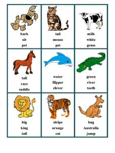 Taboo Cards Animals