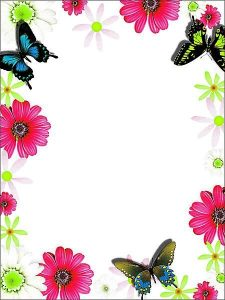 Floral Butterfly Border