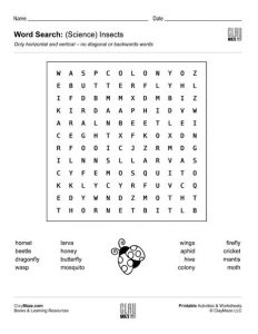 Second Grade Word Search Worksheets