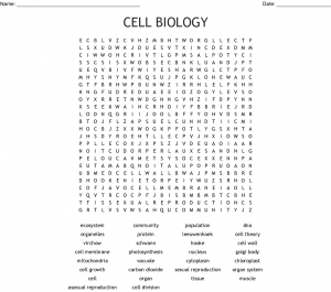Biology Word Search Picture