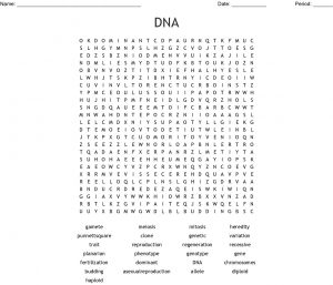 DNA Word Search Image
