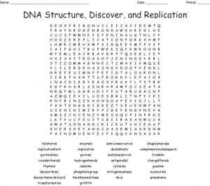 DNA Word Search Picture