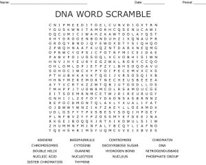 DNA Word Search Worksheet